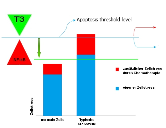 Tocotrienol lowers the Apoptosis threshhold level